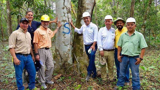 Mitarbeiter von ACOFOP im Waldschutzgebiet