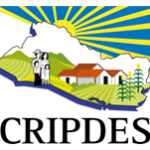 Logo der Organisation CRIPDES