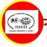 feasies logo