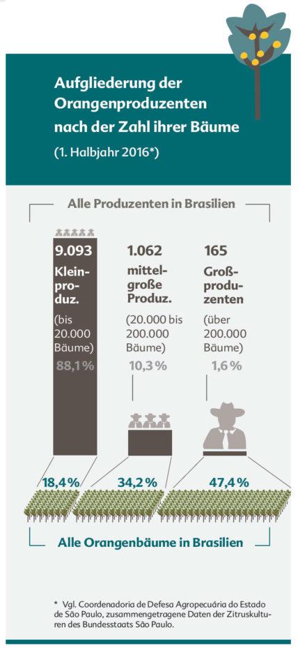 In Brasilien sind 88,1 Prozent der Orangenbauern und -Bäuerinnen Kleinproduzenten. Sie besitzen aber nur 18,4 Prozent der Bäume. Hingegen besitzen die 10,3 Prozent der Mittelgroßen 34,2 Prozent der Bäume. Die lediglich 1,6 Prozent der Großproduzenten besitzen ganze 47,4 Prozent aller Orangenbäume.