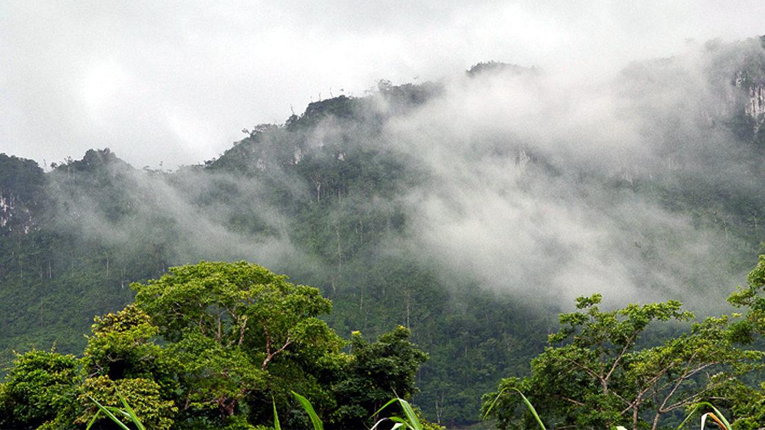 Natur-CentroHumboldt-Nicaragua-CopyrightCHundCIR