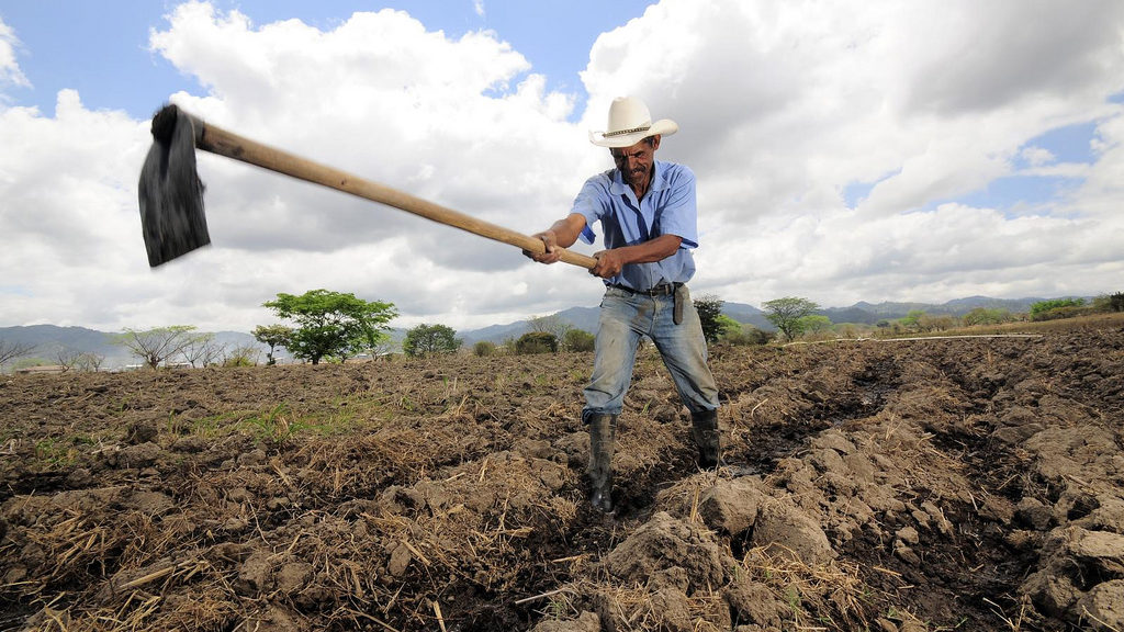 Ein Bauer in Hondruas bestellt sein Feld mit einer Hacke