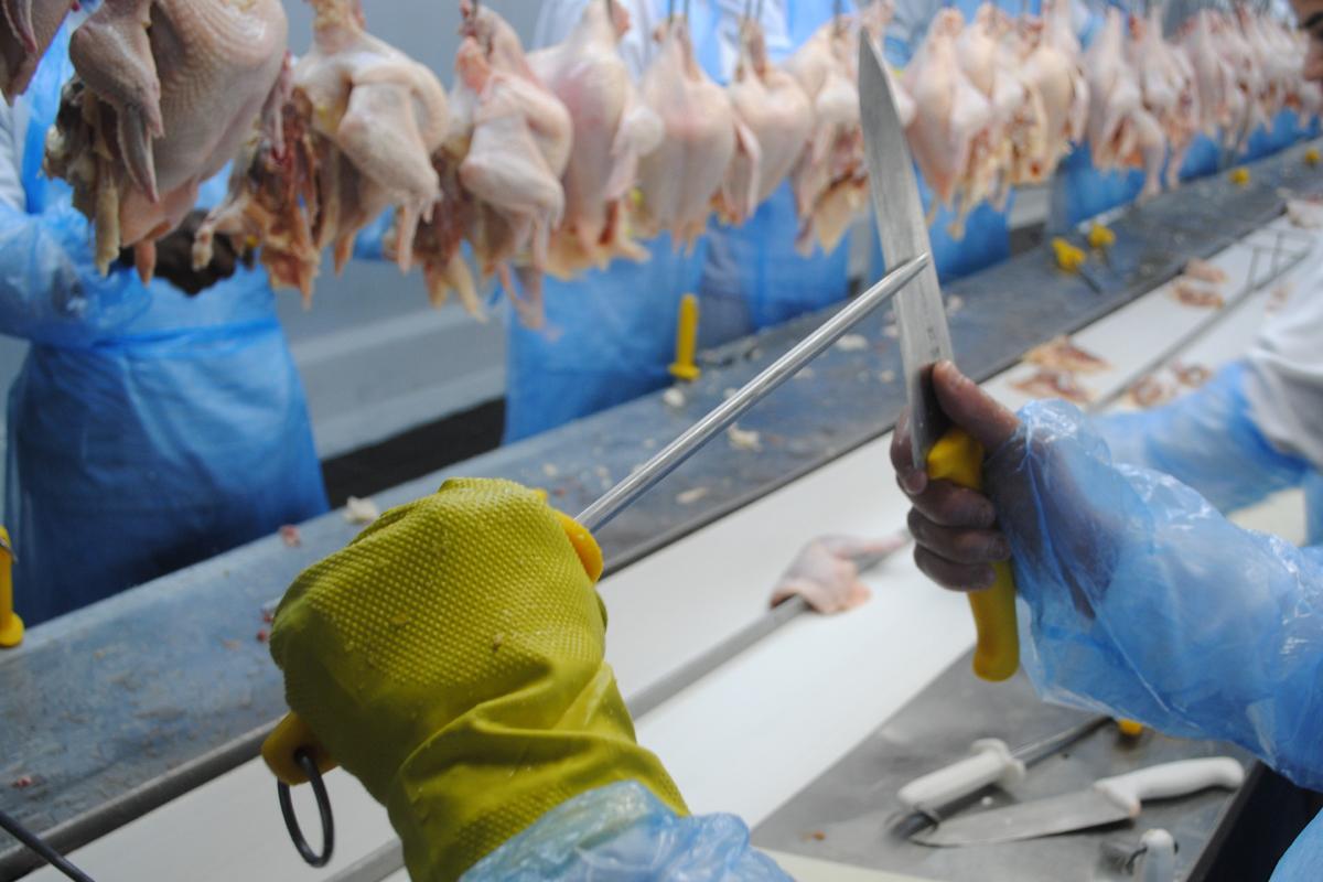 Arbeiter*in schleift die Klinge ihres Schlachtermessers.