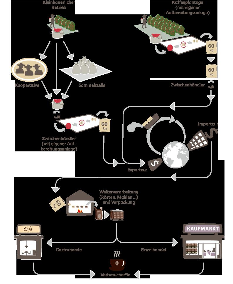 Grafische Darstellung der Kaffeelieferkette von der Plantage bis zur Konsument*in