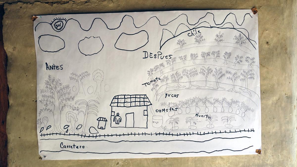 Zeichnung eines Familiengartens im Klimaschutz und -anpassungs-Projekt in Mittelamerika