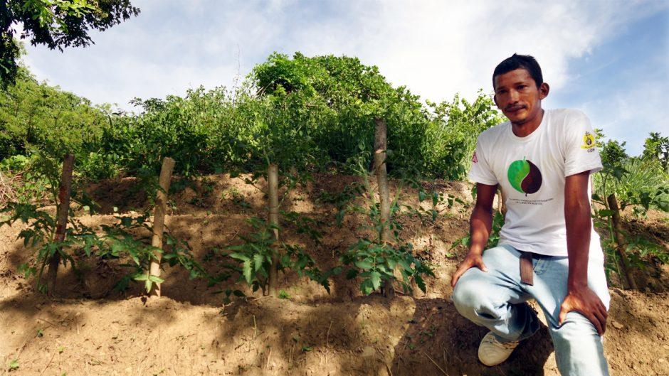 Ein junger Mann präsentiert seinen Gemüsegarten im Trockenkorridor von Zentralamerika