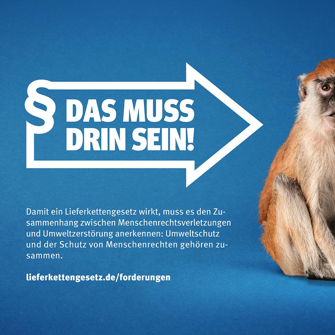 """Pfeil im Stil des Logos der Initiative Lieferkettengesetz mit den Spruch """"Das muss drin sein!"""" zeigt auf einen Affen"""
