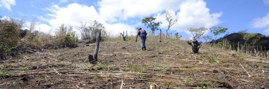 Landwirt in Nicaragua