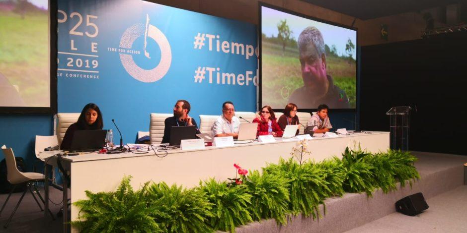Ein Vertreter unserer Partnerorganisation ASEDE auf einem Podium während der COP Klimakonferenz 2019